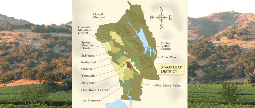Stags Leap Vineyard Tours